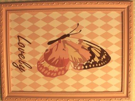 Quadro 30x40cm mold. trabalhada borboleta Clarear